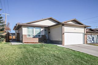 Main Photo: 259 Templeton Circle NE in Calgary: Temple Detached for sale : MLS®# A1156003