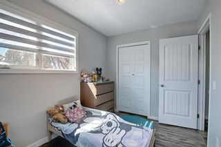 Photo 26: 1027 Penrith Crescent SE in Calgary: Penbrooke Meadows Detached for sale : MLS®# A1104837