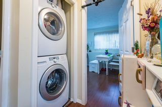 Photo 30: 785 26th St in : CV Courtenay City House for sale (Comox Valley)  : MLS®# 863552