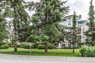 """Photo 15: 202 3629 DEERCREST Drive in North Vancouver: Roche Point Condo for sale in """"RAVEN WOODS"""" : MLS®# R2279475"""