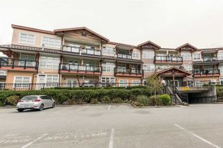 Photo 19: 321 41105 TANTALUS ROAD in Squamish: Tantalus Condo for sale : MLS®# R2165700