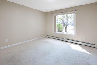 Photo 15: 112 4407 23 Street NW in Edmonton: Zone 30 Condo for sale : MLS®# E4245816
