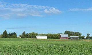 Photo 2:  in Killarney: Agriculture for sale : MLS®# 202116569