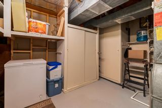Photo 35: 28 Kelvin Place SW in Calgary: Kingsland Detached for sale : MLS®# A1079223