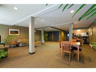 "Photo 19: 415 285 NEWPORT Drive in Port Moody: North Shore Pt Moody Condo for sale in ""THE BELCARRA"" : MLS®# V1052199"