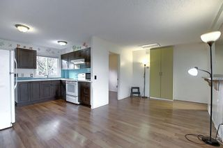 Photo 3: 1209 53B Street SE in Calgary: Penbrooke Meadows Row/Townhouse for sale : MLS®# A1042695