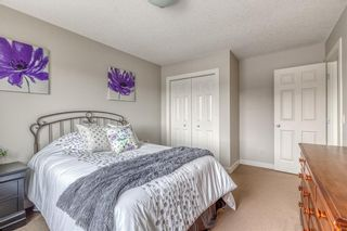 Photo 29: 212 COPPERPOND Circle SE in Calgary: Copperfield Detached for sale : MLS®# C4305503