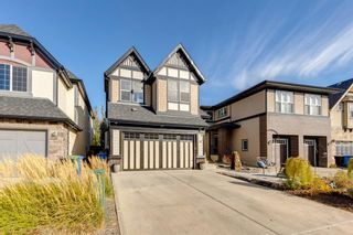 Photo 47: 16 Marquis Grove SE in Calgary: Mahogany Detached for sale : MLS®# A1152905