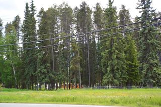 Photo 6: LOT 4-7 W 16 Highway in Smithers: Smithers - Town Land Commercial for sale (Smithers And Area (Zone 54))  : MLS®# C8038974