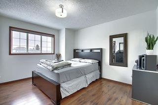 Photo 17: 47 Appleburn Close SE in Calgary: Applewood Park Detached for sale : MLS®# A1049300