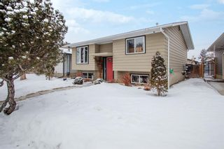 Photo 3: 4131 Doverview Drive SE in Calgary: Dover Detached for sale : MLS®# A1063702