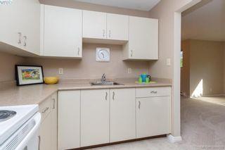Photo 11: 106 3258 Alder St in VICTORIA: SE Quadra Condo for sale (Saanich East)  : MLS®# 775931