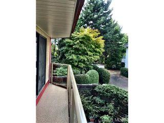Photo 19: 208 406 Simcoe St in VICTORIA: Vi James Bay Condo for sale (Victoria)  : MLS®# 711962