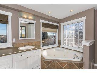 Photo 15: 1134 LAKE CHRISTINA Way SE in Calgary: Lake Bonavista House for sale : MLS®# C4051851