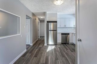 Photo 12: 40 Fyffe Road SE in Calgary: Fairview Detached for sale : MLS®# A1087903