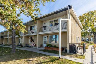 Main Photo: 386 2211 19 Street NE in Calgary: Vista Heights Row/Townhouse for sale : MLS®# A1149478