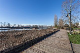 Photo 17: 506 3168 RIVERWALK AVENUE in Vancouver: Champlain Heights Condo for sale (Vancouver East)  : MLS®# R2106705