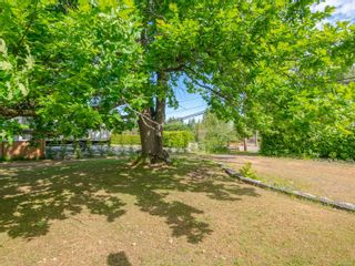 Photo 11: 7261 Lantzville Rd in : Na Lower Lantzville House for sale (Nanaimo)  : MLS®# 877987