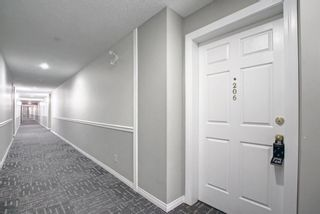 Photo 24: 206 290 Shawville Way SE in Calgary: Shawnessy Apartment for sale : MLS®# A1146672