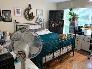 """Photo 6: 302 5499 203 Street in Langley: Langley City Condo for sale in """"Pioneer Place"""" : MLS®# R2609450"""