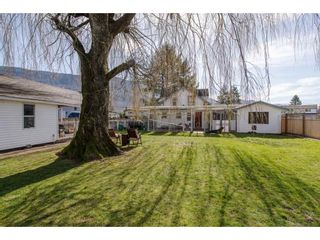 Photo 17: 41751 YARROW CENTRAL Road: Yarrow House for sale : MLS®# R2246799