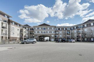 Photo 22: 240 1520 Hammond Gate NW in Edmonton: Condo for sale
