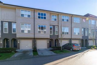 """Photo 1: 147 7938 209 Street in Langley: Willoughby Heights Townhouse for sale in """"RED MAPLE PARK"""" : MLS®# R2537088"""
