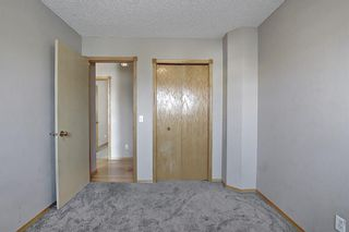 Photo 32: 766 Coral Springs Boulevard NE in Calgary: Coral Springs Detached for sale : MLS®# A1136272