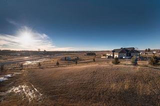Photo 2: 32050 292 Avenue E: Rural Foothills M.D. Residential Detached Single Family for sale : MLS®# C3651103