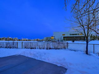 Photo 39: 30 Springborough Crescent SW in Calgary: Springbank Hill Detached for sale : MLS®# A1070980