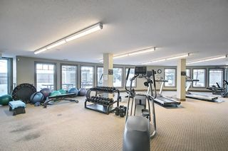 Photo 29: 318 52 CRANFIELD Link SE in Calgary: Cranston Apartment for sale : MLS®# A1074585
