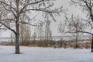 Photo 2: 33 Moncton Road NE in Calgary: Winston Heights/Mountview Detached for sale : MLS®# A1044576