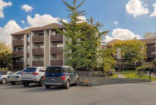 """Photo 1: 404 340 GINGER Drive in New Westminster: Fraserview NW Condo for sale in """"FRASER MEWS"""" : MLS®# R2565545"""