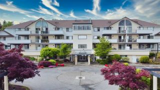 """Photo 29: 210 19645 64 Avenue in Langley: Willoughby Heights Condo for sale in """"Highgate Terrace"""" : MLS®# R2455714"""