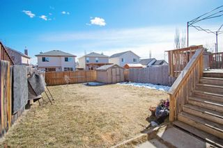 Photo 23: 1058 Bridlemeadows Manor SW in Calgary: Bridlewood Detached for sale : MLS®# A1084689