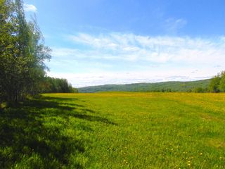 Photo 15: 13934 PACKHAM FRONTAGE Road: Charlie Lake Agri-Business for sale (Fort St. John (Zone 60))  : MLS®# C8039465