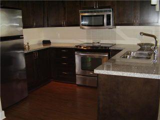 "Photo 5: 310 2368 MARPOLE Avenue in Port Coquitlam: Central Pt Coquitlam Condo for sale in ""RIVERROCK LANDING"" : MLS®# V898717"