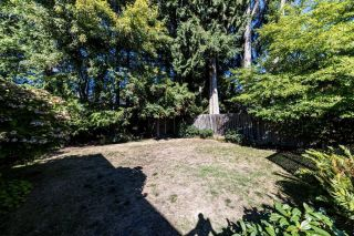 Photo 3: 428 W 28TH Street in North Vancouver: Upper Lonsdale House for sale : MLS®# R2616370