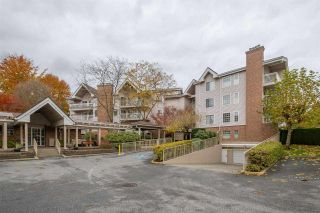 "Photo 2: 204 2973 BURLINGTON Drive in Coquitlam: North Coquitlam Condo for sale in ""BURLINGTON ESTATES"" : MLS®# R2516891"