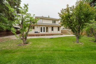 Photo 9: 17428 53 Ave NW: Edmonton House for sale : MLS®# E4248273