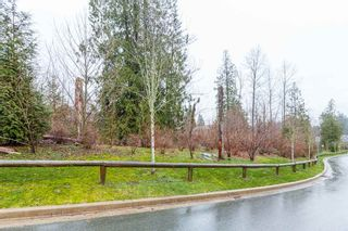 "Photo 20: 13492 229 Loop in Maple Ridge: Silver Valley Condo for sale in ""HAMPSTEAD"" : MLS®# R2434504"