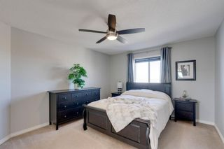 Photo 18: 227 Silver Springs Way NW: Airdrie Detached for sale : MLS®# A1083997