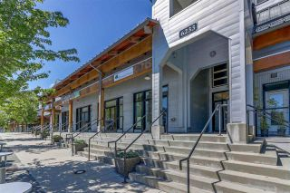 """Photo 1: 116 6233 LONDON Road in Richmond: Steveston South Condo for sale in """"LONDON STATION"""" : MLS®# R2278310"""