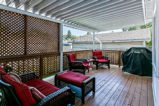 Photo 7: 139 Appletree Close SE in Calgary: Applewood Park Detached for sale : MLS®# A1022936