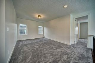 Photo 22: 17928 59 Street in Edmonton: Zone 03 House for sale : MLS®# E4227511