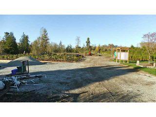 Photo 11: 24533 DEWDNEY TRUNK Road in Maple Ridge: Websters Corners House for sale : MLS®# V1033097
