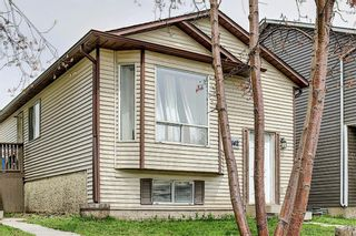 Photo 3: 142 Martindale Boulevard NE in Calgary: Martindale Detached for sale : MLS®# A1111282