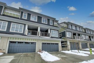 Photo 42: 191 Silverado Plains Park SW in Calgary: Silverado Row/Townhouse for sale : MLS®# A1086865
