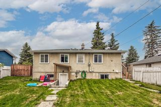 Photo 19: 8516 Bowness Road NW in Calgary: Bowness Detached for sale : MLS®# A1129149
