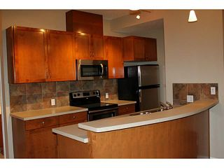 Photo 4: 3205 24 HEMLOCK Crescent SW in CALGARY: Spruce Cliff Condo for sale (Calgary)  : MLS®# C3554343